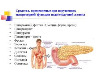 Средства, применяемые при нарушениях экскреторной функции поджелудочной желез