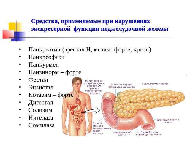 Средства, применяемые при нарушениях экскреторной функции поджелудочной желез...