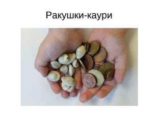 Ракушки-каури