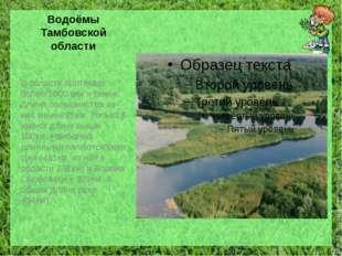 Водоёмы Тамбовской области В области протекает более 1000 рек и речек. Длина