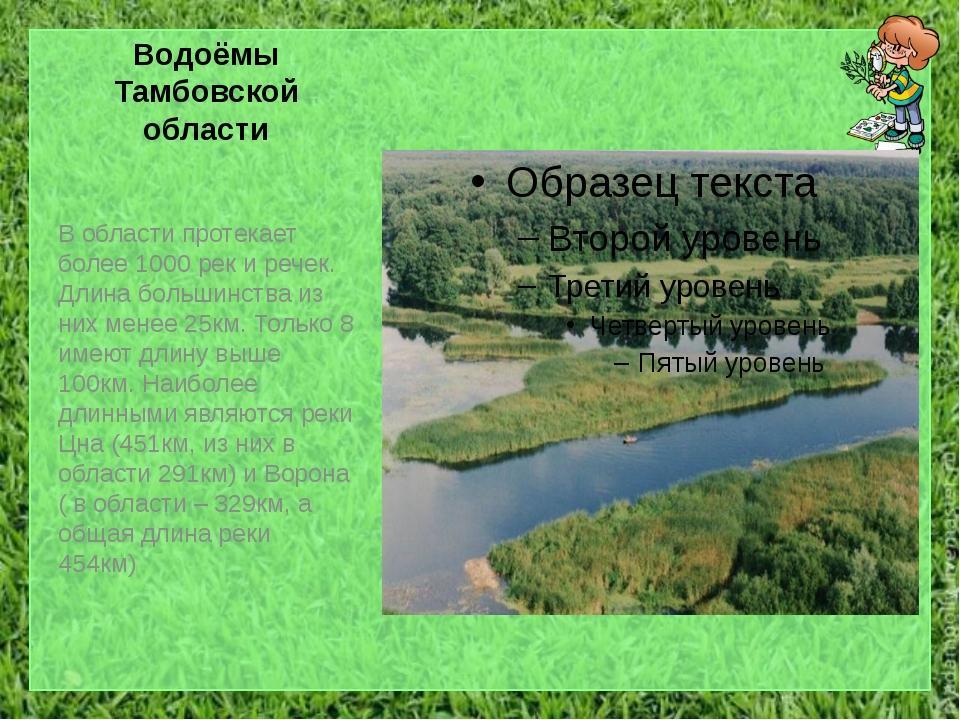 Водоёмы Тамбовской области В области протекает более 1000 рек и речек. Длина...