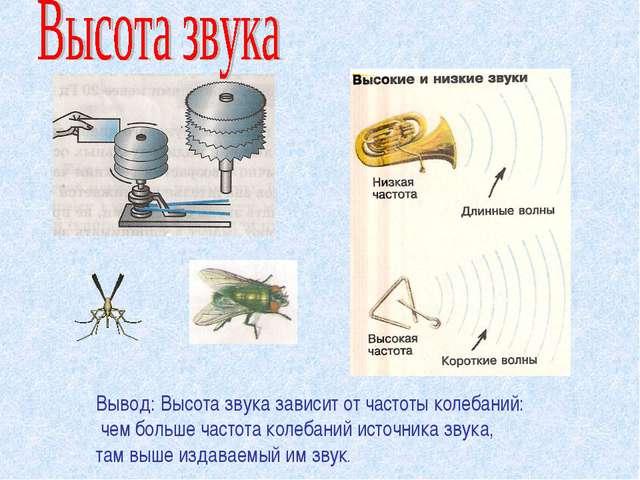 Вывод: Высота звука зависит от частоты колебаний: чем больше частота колебани...