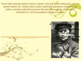 «В начале октября 1918 года Революционный Военный Совет левобережной группы в