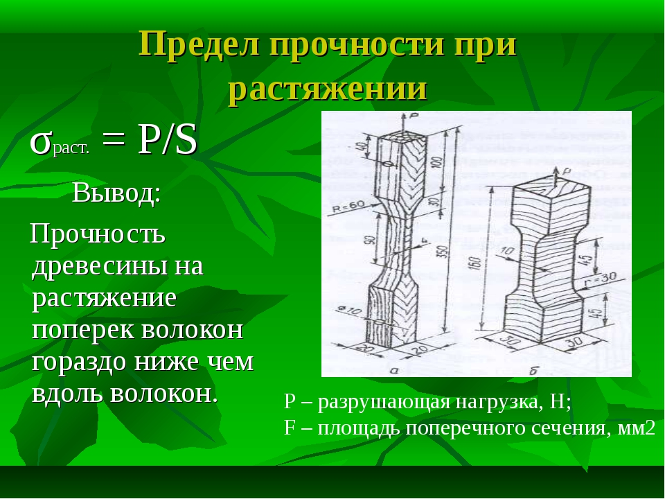 Предел прочности при растяжении σраст. = P/S Вывод: Прочность древесины на ра...