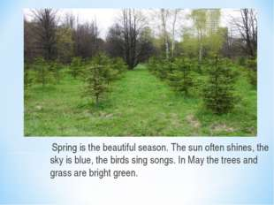 Spring is the beautiful season. The sun often shines, the sky is blue, the b