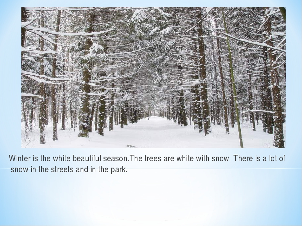 Winter is the white beautiful season.The trees are white with snow. There is...