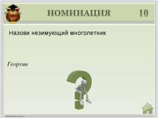 Георгин Назови незимующий многолетник