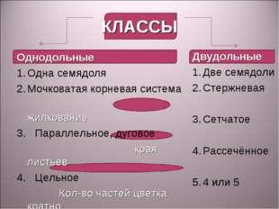 КЛАССЫ Однодольные Одна семядоля Мочковатая корневая система жилкование 3. Па