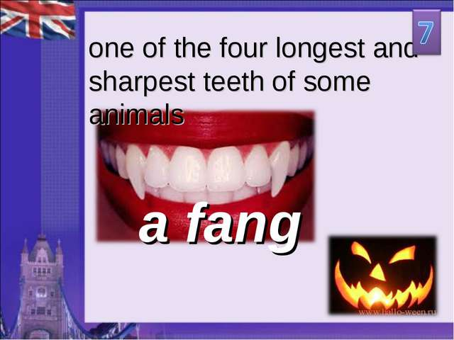 a fang one of the four longest and sharpest teeth of some animals