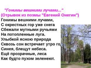 """""""Гонимы вешними лучами..."""" (Отрывок из поэмы """"Евгений Онегин"""") Гонимы вешн"""