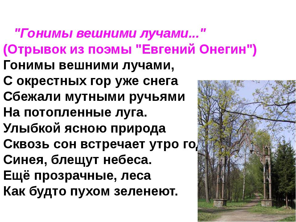 """""""Гонимы вешними лучами..."""" (Отрывок из поэмы """"Евгений Онегин"""") Гонимы вешн..."""
