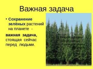Важная задача Сохранение зелёных растений на планете - важная задача, стоящая