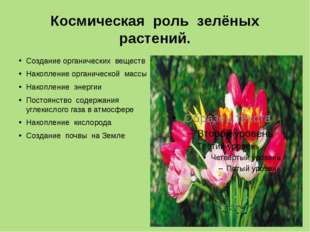 Космическая роль зелёных растений. Создание органических веществ Накопление о