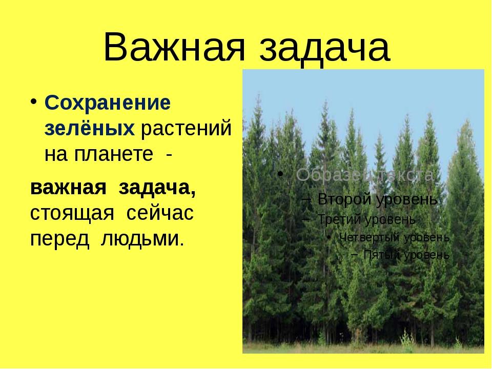 Важная задача Сохранение зелёных растений на планете - важная задача, стоящая...