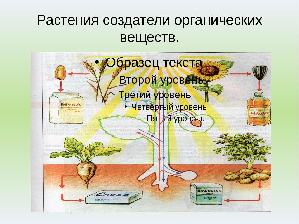 Растения создатели органических веществ.
