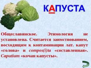 Общеславянское. Этимология не установлена. Считается заимствованием, восходящ
