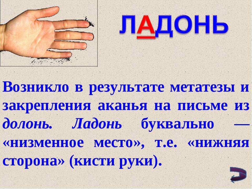 Возникло в результате метатезы и закрепления аканья на письме из долонь. Ладо...