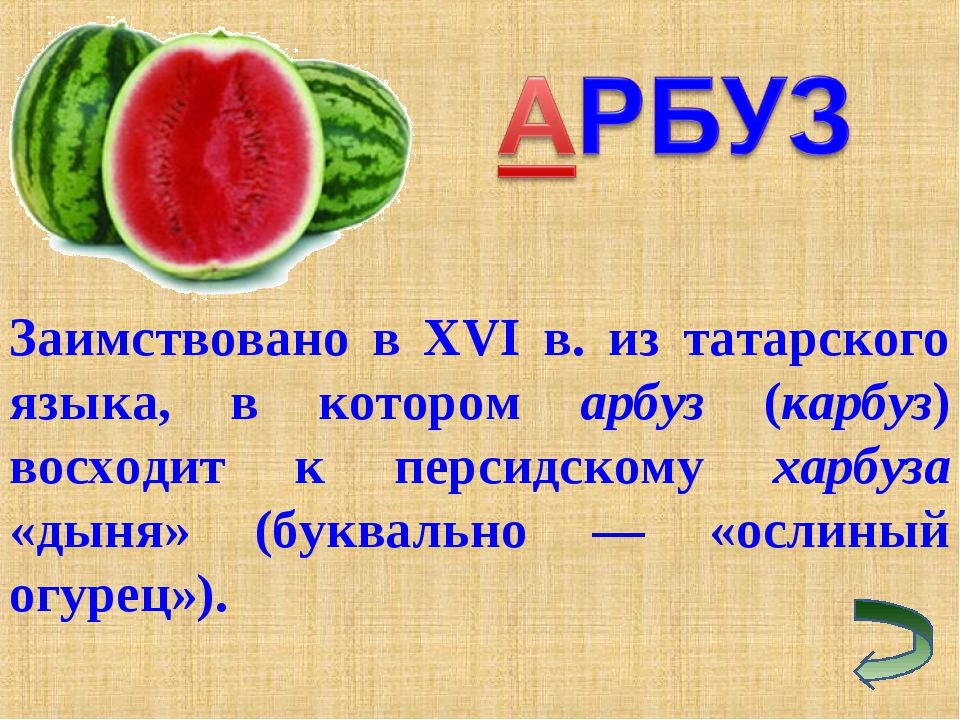 Заимствовано в XVI в. из татарского языка, в котором арбуз (карбуз) восходит...
