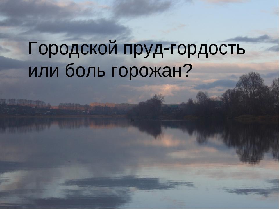 Городской пруд-гордость или боль горожан?