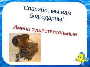 Спасибо, мы вам благодарны! Имена существительные FokinaLida.75@mail.ru Fokin