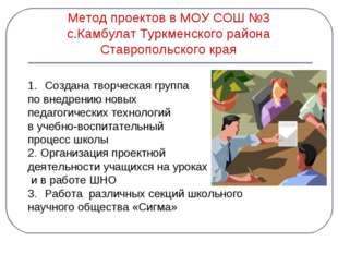 Метод проектов в МОУ СОШ №3 с.Камбулат Туркменского района Ставропольского кр