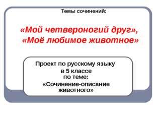 «Мой четвероногий друг», «Моё любимое животное» Проект по русскому языку в 5