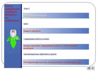 Этапы разработки учебного проекта и их содержание Заключительный Цель Защита
