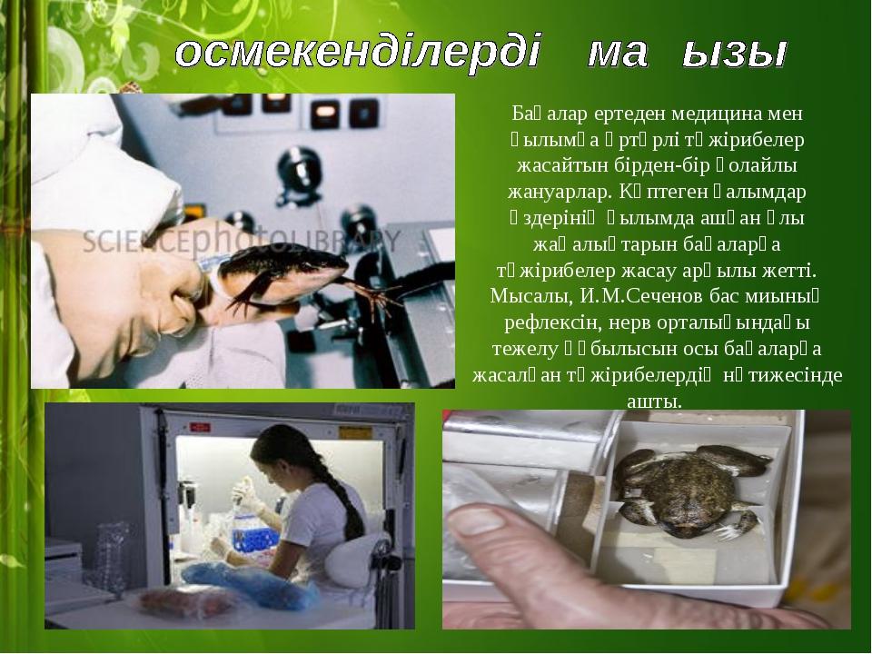 Бақалар ертеден медицина мен ғылымға әртүрлі тәжірибелер жасайтын бірден-бір...