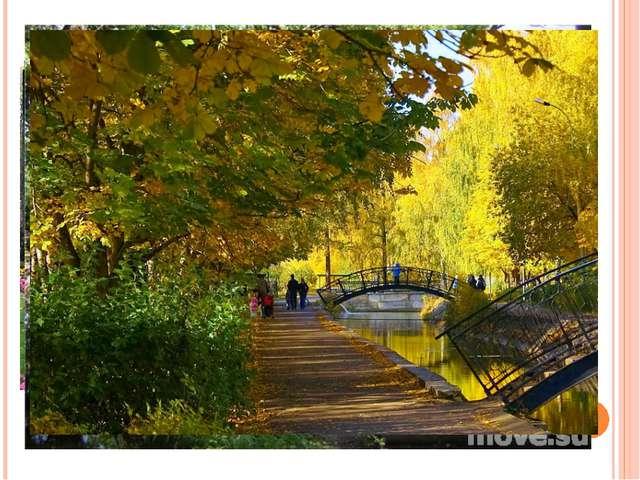 В каждом городе обязательно есть парки. Они похожи на зеленые островки, где з...