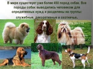 В мире существует уже более 450 пород собак. Все породы собак выводились чело