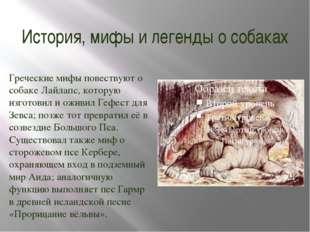 История, мифы и легенды о собаках Греческие мифы повествуют о собаке Лайлапс,