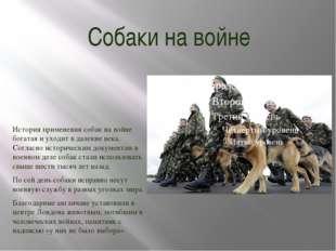 Собаки на войне История применения собак на войне богатая и уходит в далекие