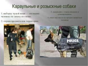 Караульные и розыскные собаки 1. выборку чужой вещи — опознание человека по з