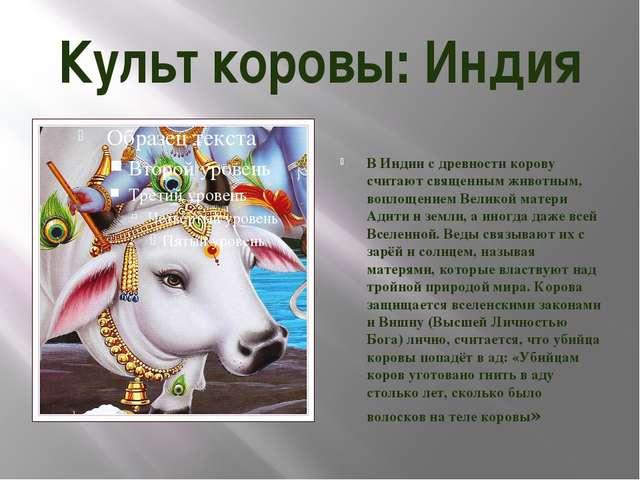 Культ коровы: Индия В Индии с древности корову считают священным животным, во...