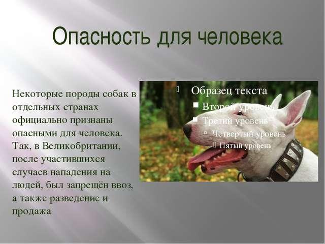 Опасность для человека Некоторые породы собак в отдельных странах официально...