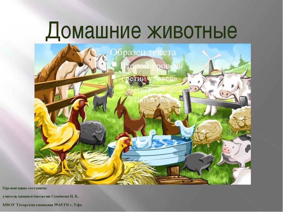 Домашние животные Презентацию составила: учитель химии и биологии Семёнова И....
