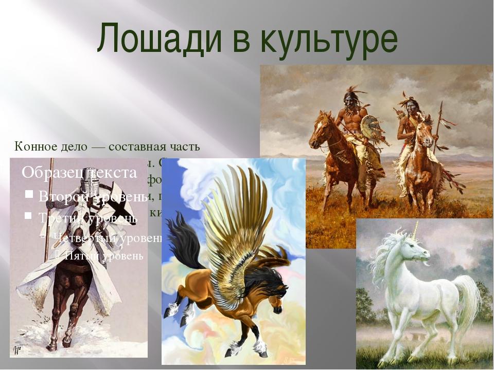 Лошади в культуре Конное дело — составная часть человеческой культуры. С ними...