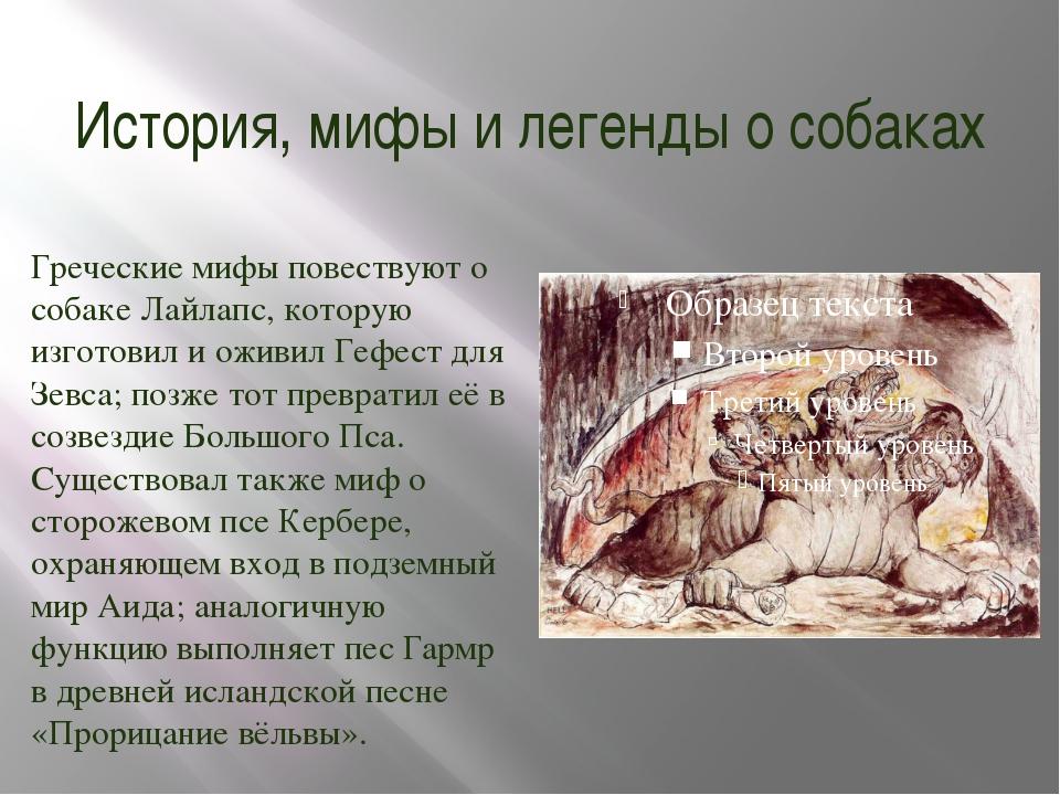 История, мифы и легенды о собаках Греческие мифы повествуют о собаке Лайлапс,...