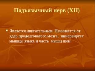 Подъязычный нерв (XII) Является двигательным. Начинается от ядер продолговато