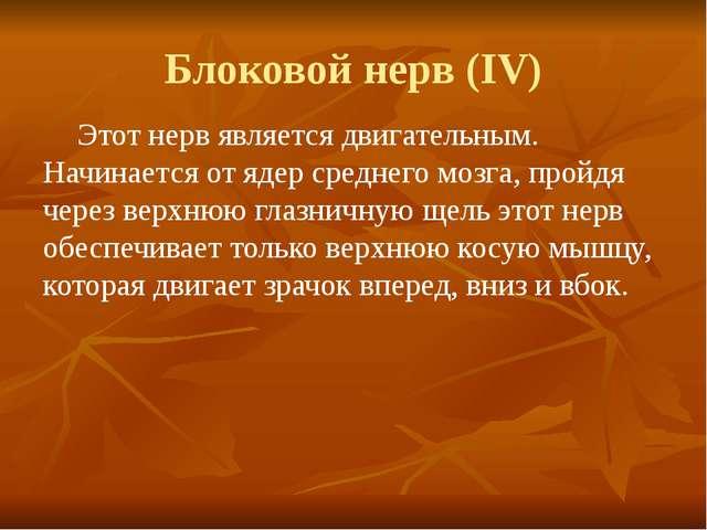 Блоковой нерв (IV) Этот нерв является двигательным. Начинается от ядер средн...