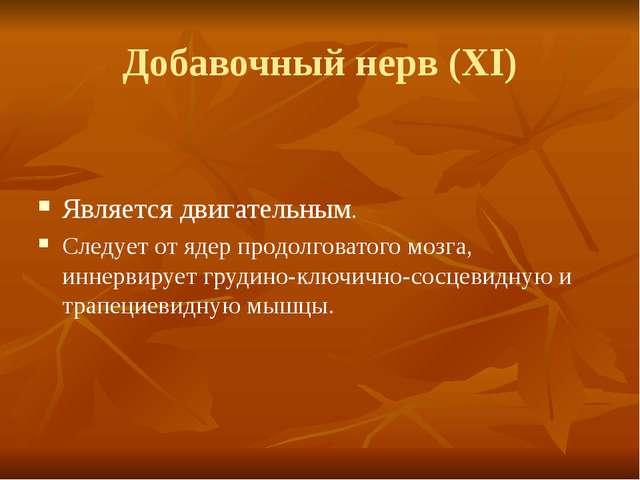 Добавочный нерв (XI) Является двигательным. Следует от ядер продолговатого мо...