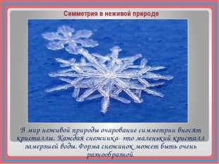 В мир неживой природы очарование симметрии вносят кристаллы. Каждая снежинка-