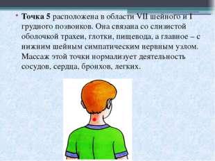 Точка 5расположена в области VII шейного и I грудного позвонков. Она связана