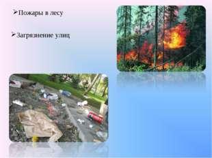 Пожары в лесу Загрязнение улиц