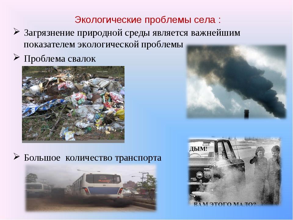Экологические проблемы села : Загрязнение природной среды является важнейшим...