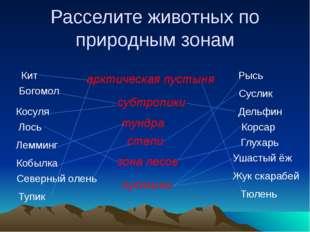 Станция «Поэтическая» А.С. Пушкин А.А. Фет С.А. Есенин Н.А. Некрасов Ф.И. Тю