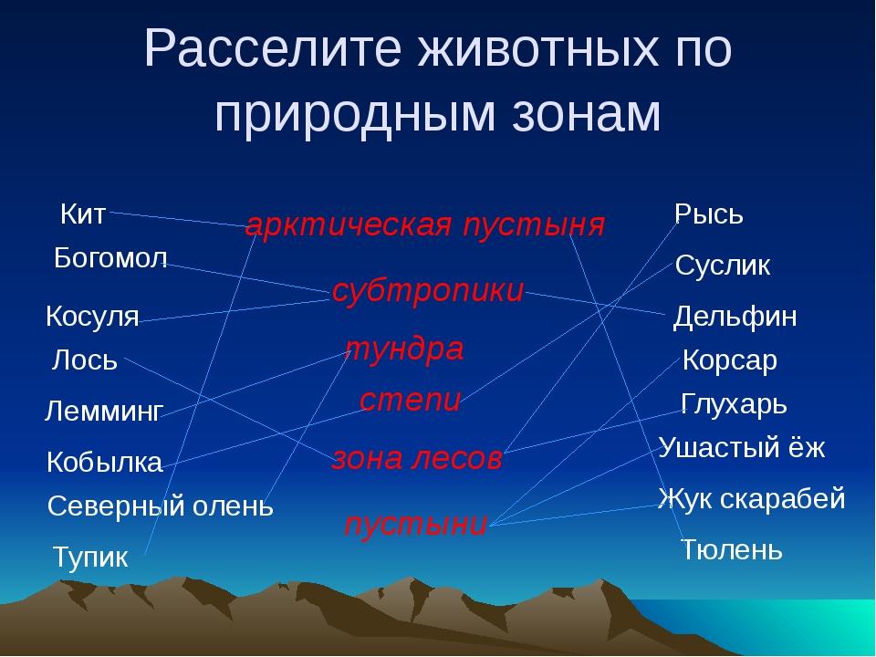 Станция «Поэтическая» А.С. Пушкин А.А. Фет С.А. Есенин Н.А. Некрасов Ф.И. Тю...