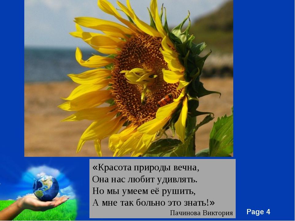 «Красота природы вечна, Она нас любит удивлять. Но мы умеем её рушить, А мне...