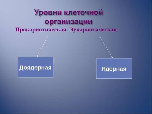 Прокариотическая Эукариотическая Доядерная Ядерная