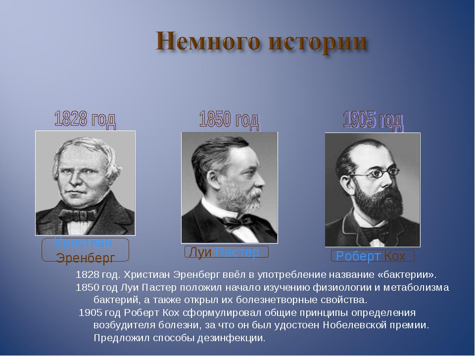 1828 год. Христиан Эренберг ввёл в употребление название «бактерии». 1850 год...